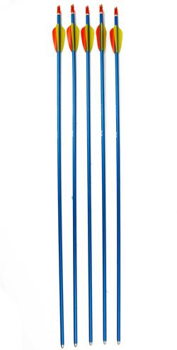 "Buy Ek Blue Aluminium Arrows 29"" x5 in NZ New Zealand."