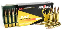 Buy .243 Win Fiocchi PerFecta 100gr Soft Point in NZ New Zealand.